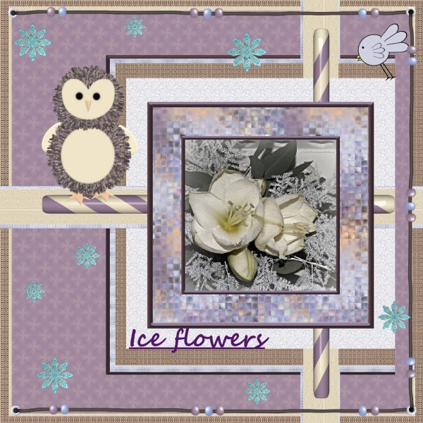 Jan_2016_-_Ice_flowers