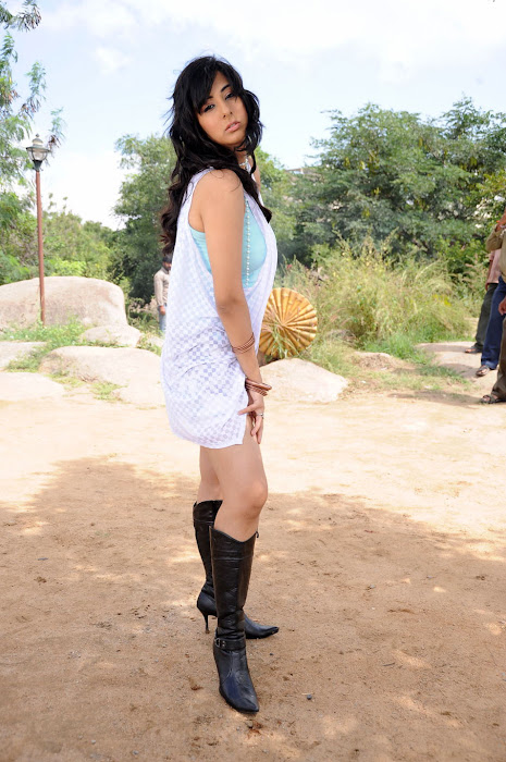 sakshi gulati from ksda movie, sakshi new unseen pics