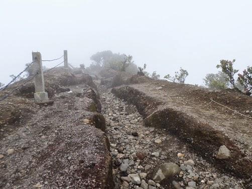 jalur puncak gede