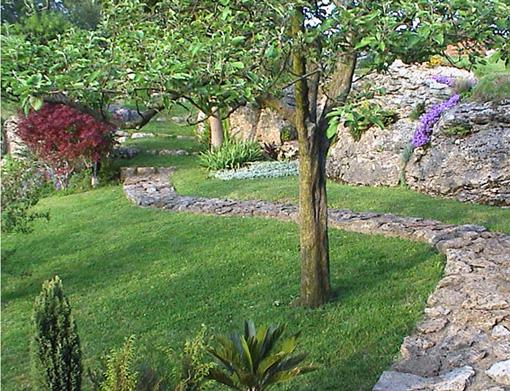 Disfrutar con el huerto y el jard n la poda en verde de for Arboles enanos para jardin
