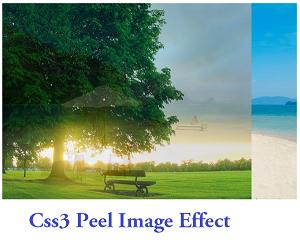 Code tạo hiệu ứng Peel cho hình ảnh trên Blogspot