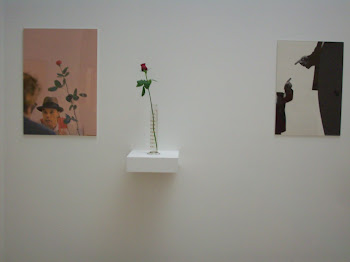 Foto de exposição no Museu Serralves (Porto - Portugal)