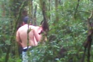 Fazendo Seo No Bosque Do Parque Barigui Durante A Tarde