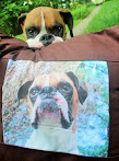 Personalized Pillow Cushion Of Me!