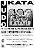 IV COPA DE ESPAÑA DE KATA