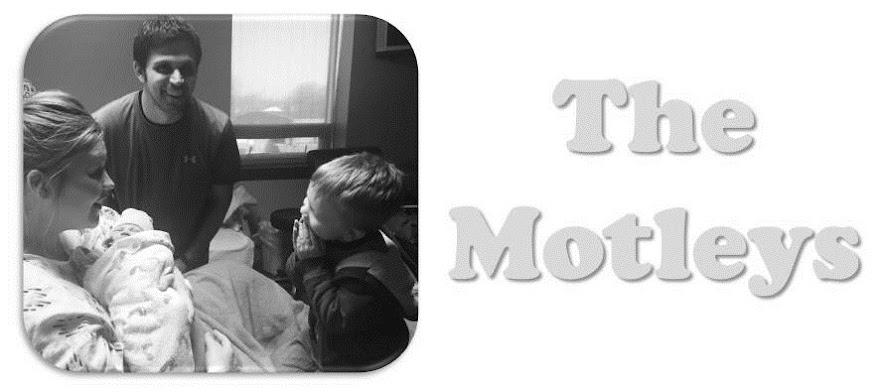 The Motleys