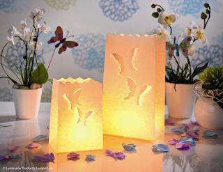 http://www.weddingforyou.co.nz/shop/193-lanterns-candle-bags