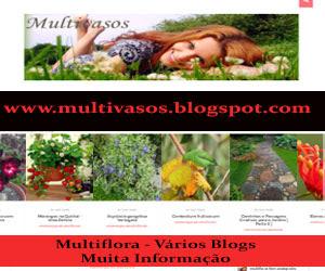Blog Multi Vasos