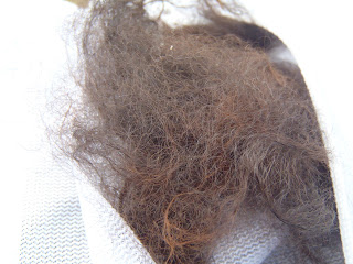 washing raw alpaca fiber