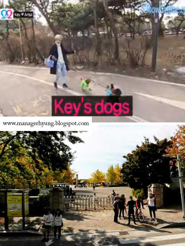 wgm key arisa