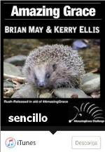 AMAZING GRACE - BRIAN MAY Y KERRY ELLIS