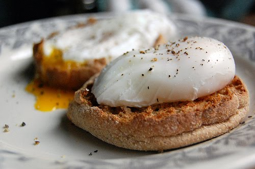 Poached Egg over English Muffin $.79