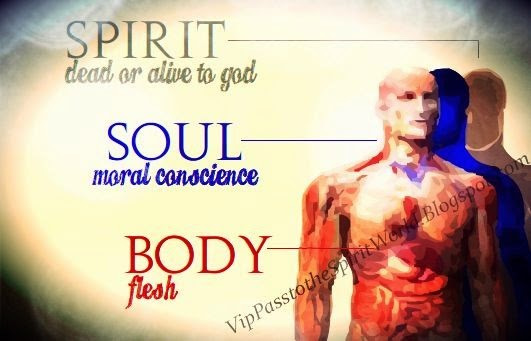 Humans: Spirit, Soul, and Body