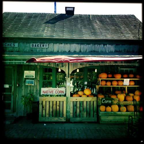 Cape Cod farm stand with corn and pumpkins by Karina Allrich