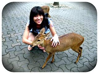 @ Nong Nooch Garden Pattaya