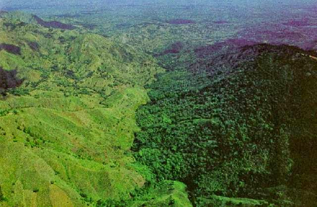 Haiti has practiced little to no control of deforestation, leaving its side of the border barren when compared to the protected rainforests of the Dominican Republi .