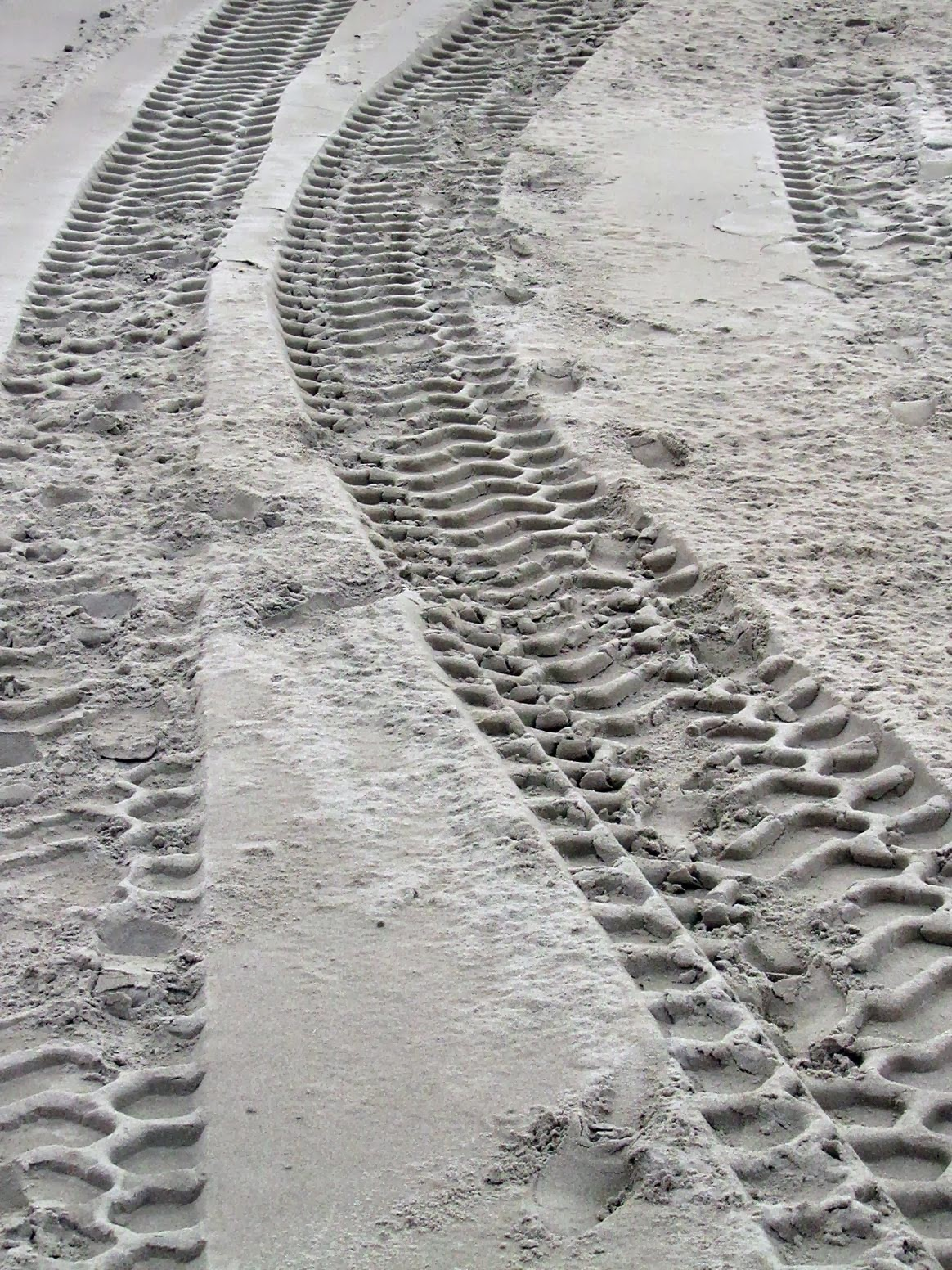 wide tracks in the sand