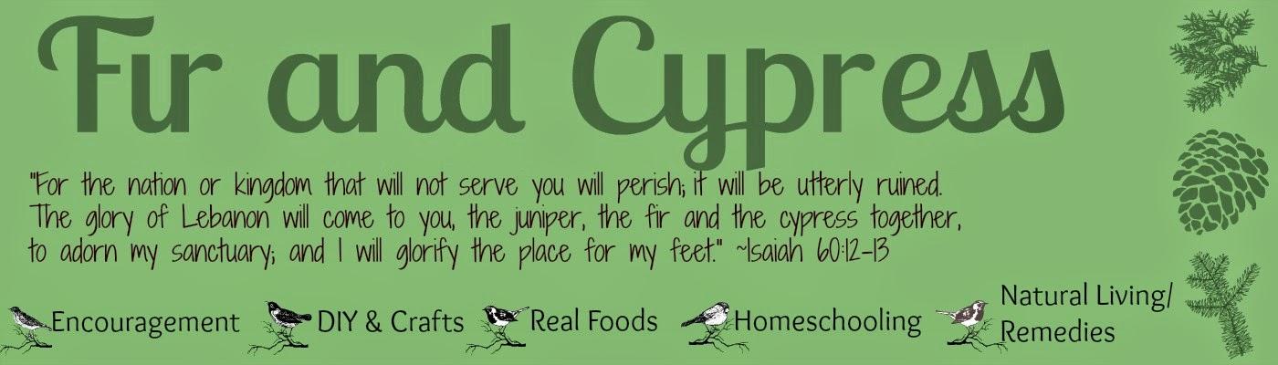 Fir and Cypress