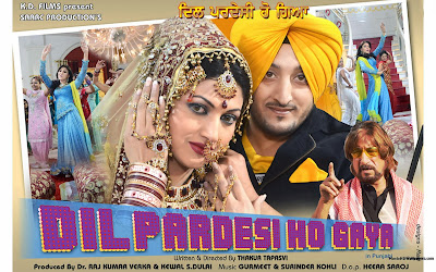 Poster Of Dil Pardesi Ho Gaya (2011) In 300MB Compressed Size PC Movie Free Download At World4ufree.Org