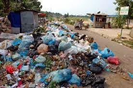 Sukses Usaha Daur Ulang Sampah