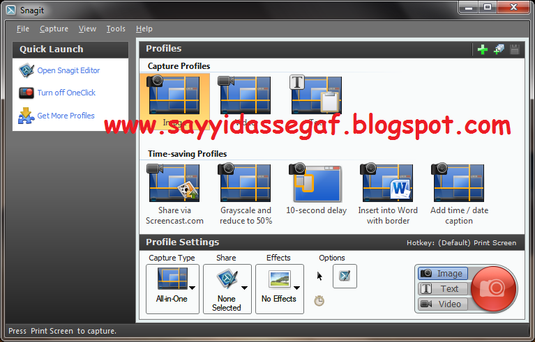 snagit 11.1 download