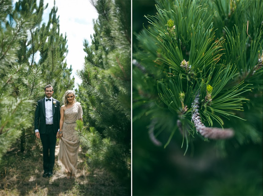 campbell point house wedding