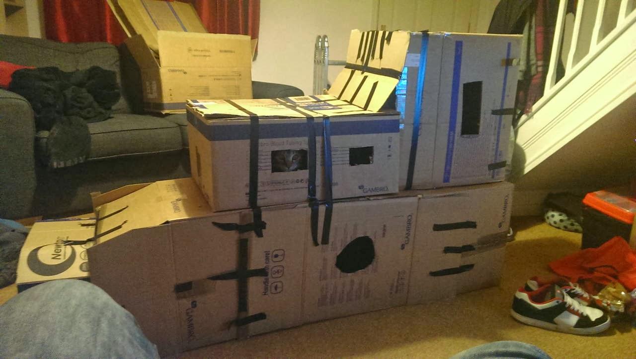 Funny cats - part 90 (40 pics + 10 gifs), cat inside his box fort