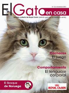 Portada El Gato en Casa. R. C.