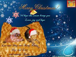 Merry Christmas Dezi , Lexi and mommy.