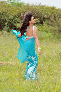 nikitha_narayana_hot_saree_stills_009.jpg