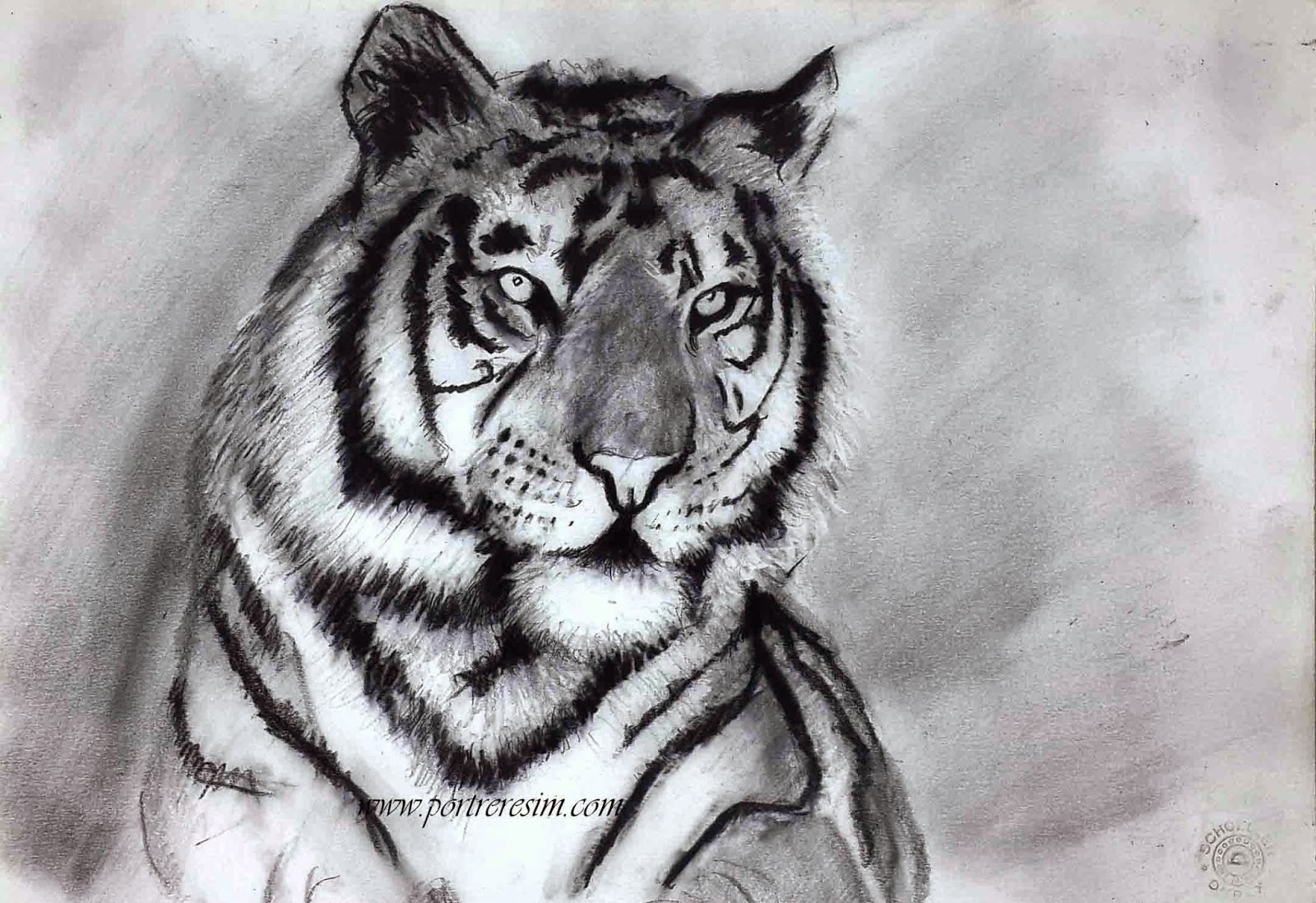 Karakalem Portre hayvan