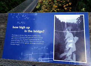 How high is Capilano Suspension Bridge
