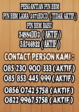 Contact Person Kami