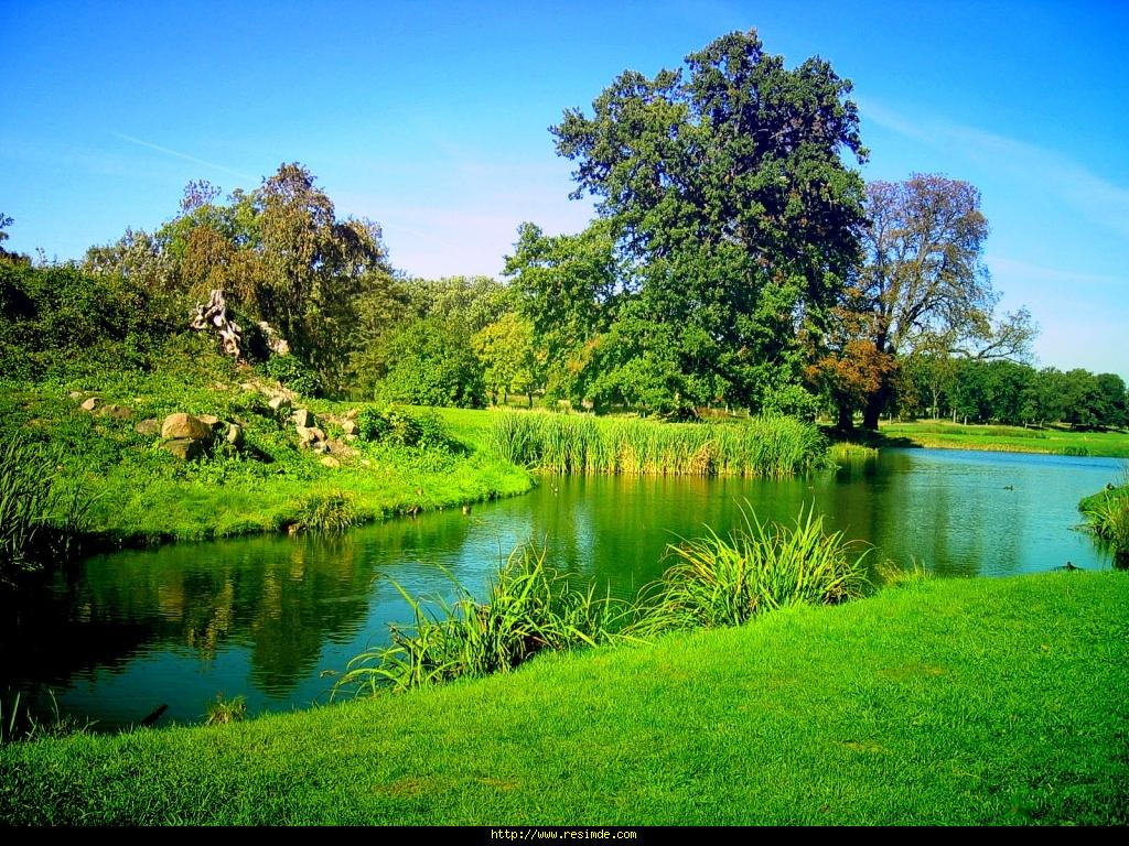 Beautiful Nature Scenes