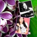 flores de lilás