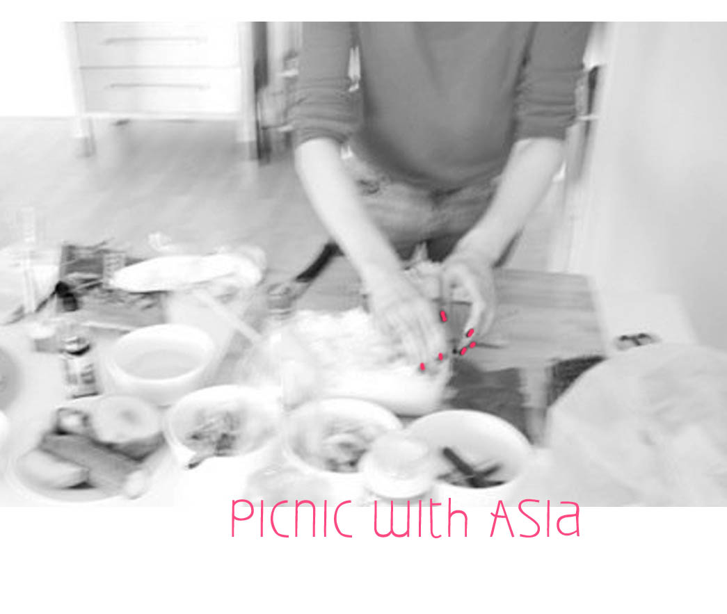 picnic with asia