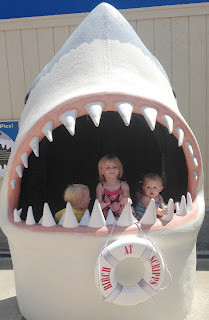 Shark with 3 kids 3