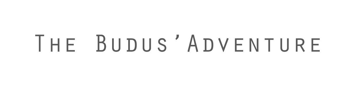 the budus' adventure