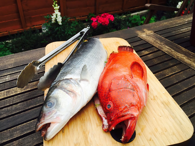 Red Grouper and Wild Sea Bass ready to go on the BBQ