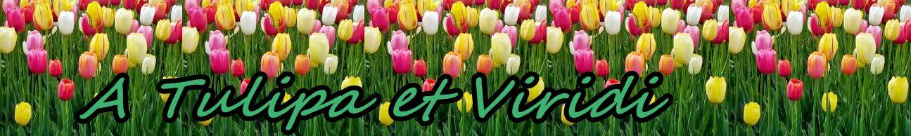 A Tulipa et Viridi