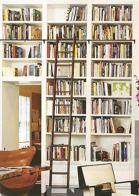 David dangerous bookshelves for Wall library design