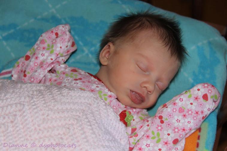 2012_09_09  Briana Marina