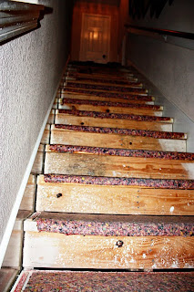 how to get carpet glue off wood stairs