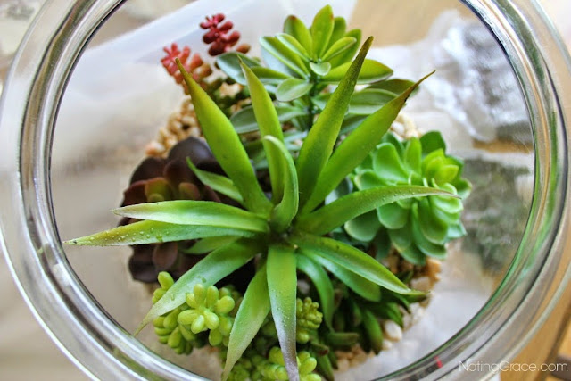 Noting Grace: $25 Faux Succulent Garden