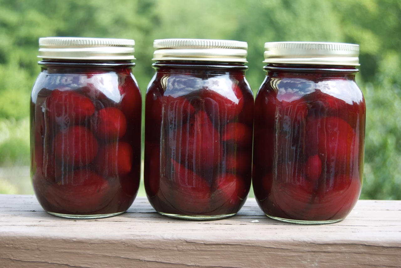 'Tis the Season: 'Tis the Season for Canning - Pickled Beets
