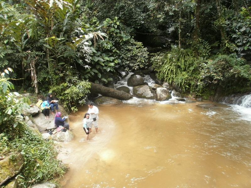 Cameron Service Mountain Tour Travel Sdn Bhd 23 Discover Explore The Natural Beauty