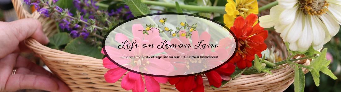Life on Lemon Lane
