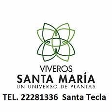 VIVERO SANTA MARIA