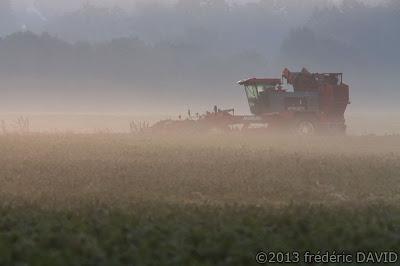 matin brume silhouette campagne tracteur moissonneuse soleil automne Sénart Seine-et-Marne