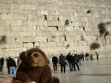Teddy Bear in Jerusalem